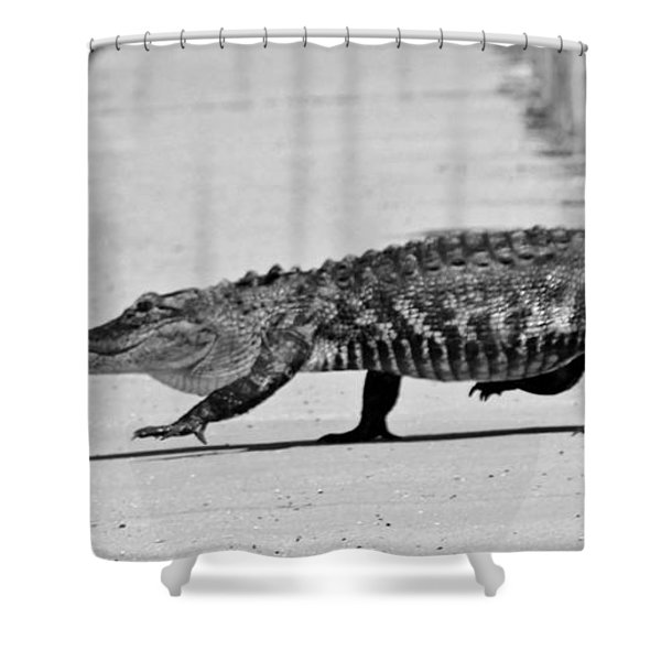 Gator Walking Shower Curtain