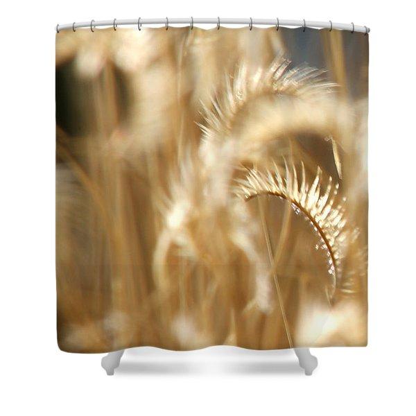 Gentle Life Shower Curtain