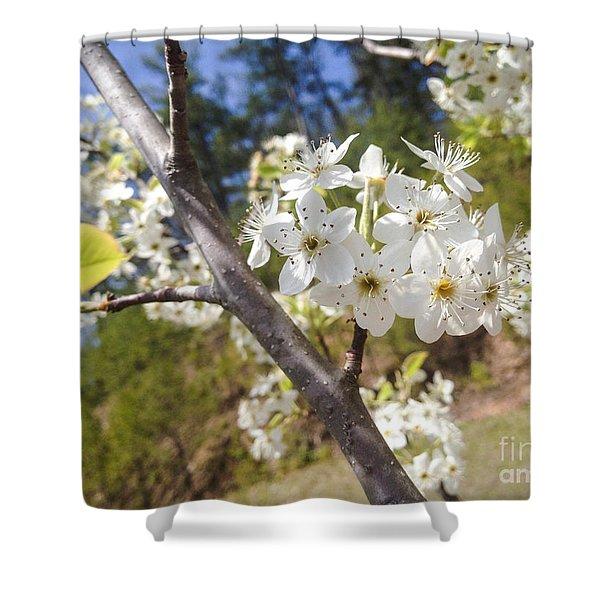 Georgia Blossoms Shower Curtain