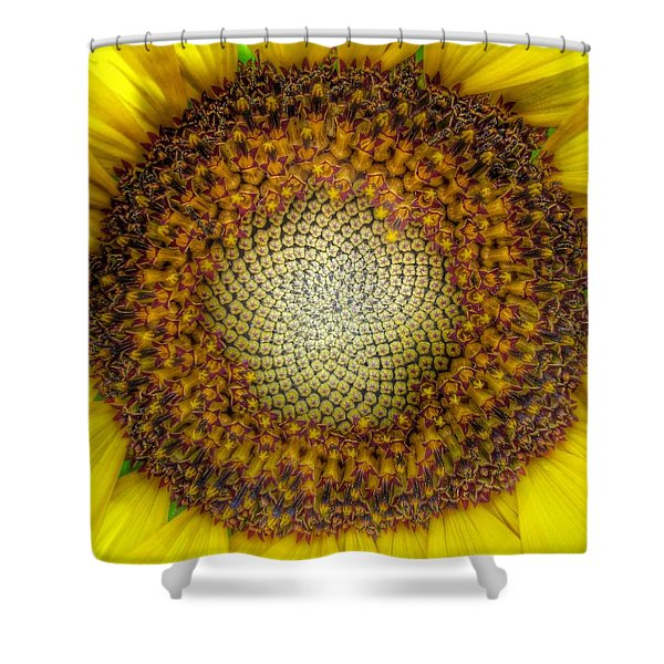 Ghost Sunflower Shower Curtain
