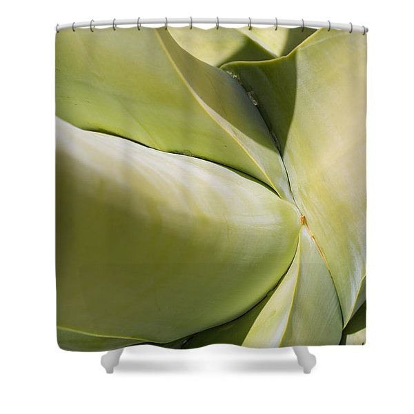 Giant Agave Abstract 9 Shower Curtain