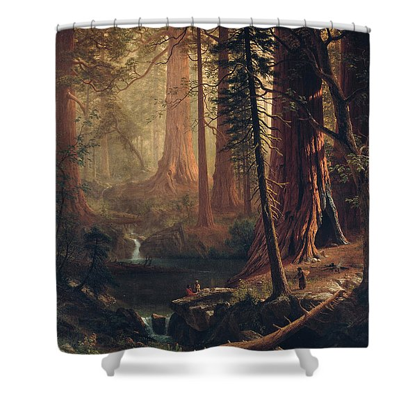 Giant Redwood Trees Of California Shower Curtain
