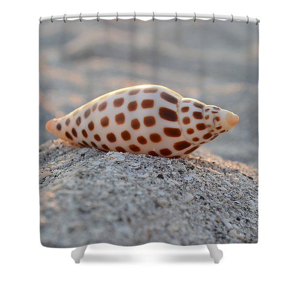 Gift From The Sea Shower Curtain