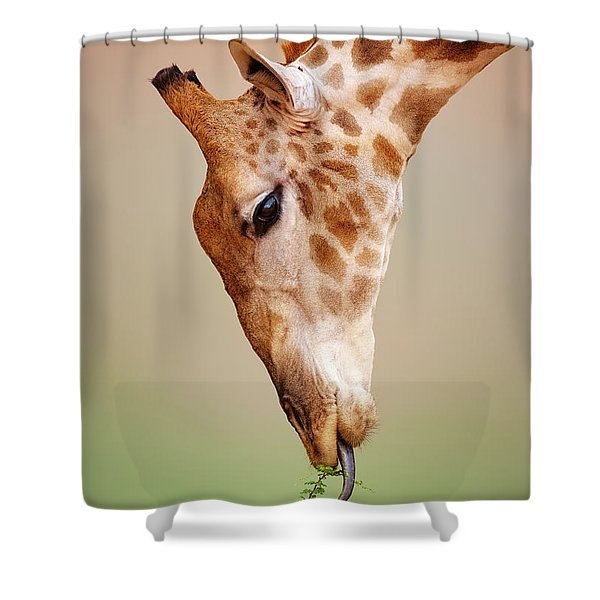 Giraffe Eating Close-up Shower Curtain