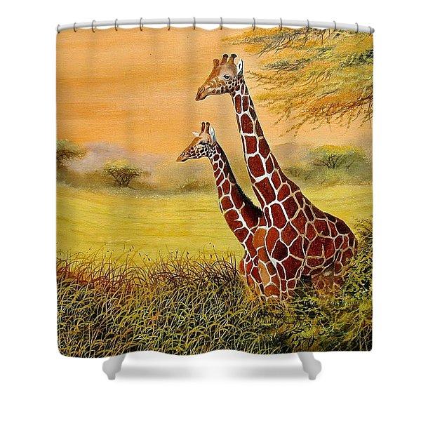 Giraffes Watching Shower Curtain