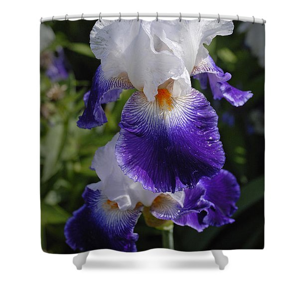 Giverny Iris Shower Curtain