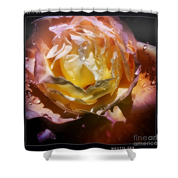 Glistening Rose Shower Curtain