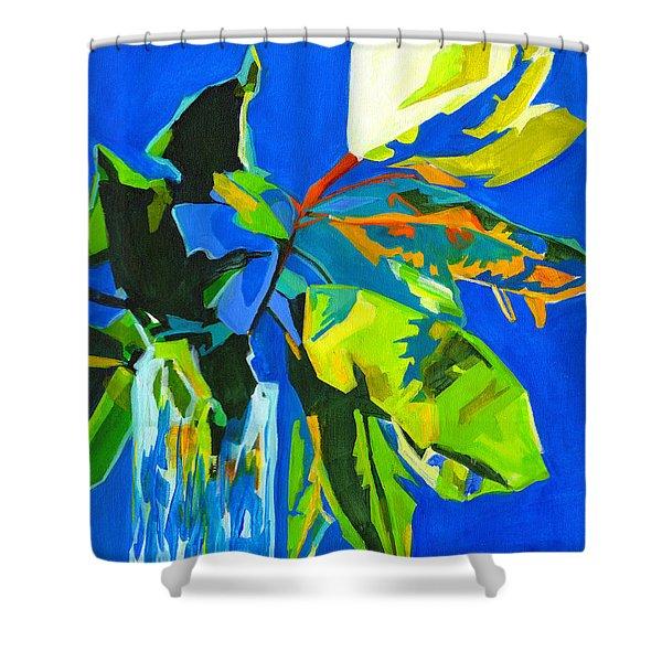 Glorious Shower Curtain