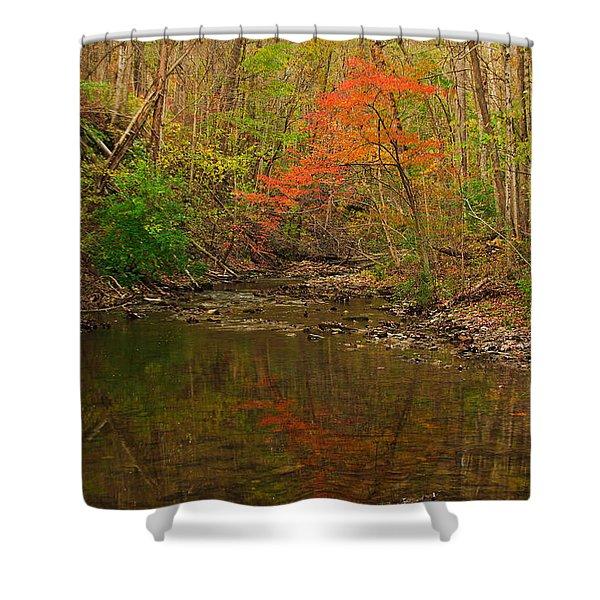 Glowing Fall Shower Curtain
