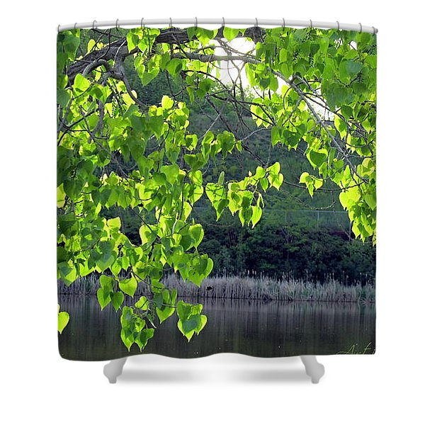Glowing Leaves Shower Curtain