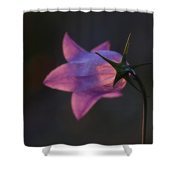 Glowing Sunset Flower Shower Curtain