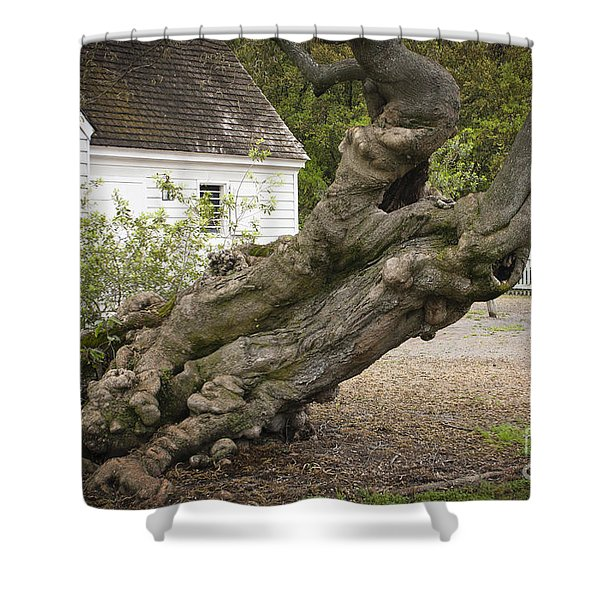 Gnarly Shower Curtain