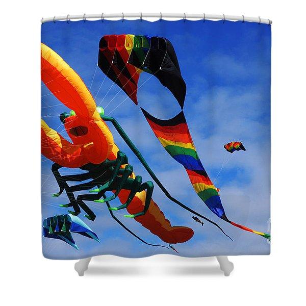Go Fly A Kite 3 Shower Curtain