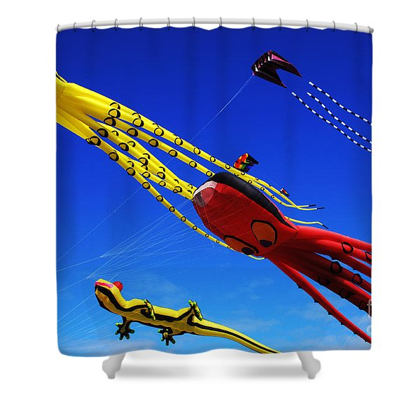 Go Fly A Kite 7 Shower Curtain