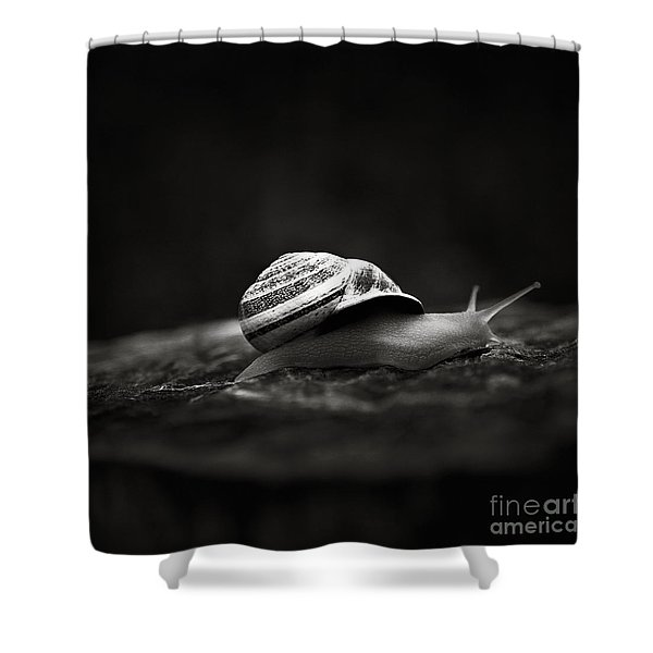 Going East Shower Curtain