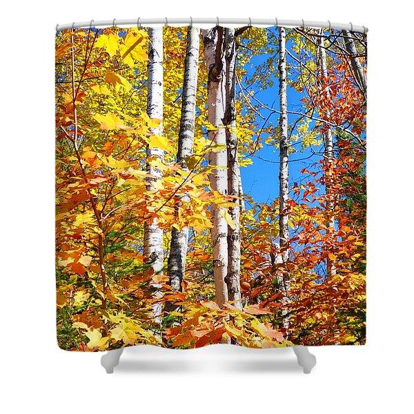 Gold Autumn Shower Curtain