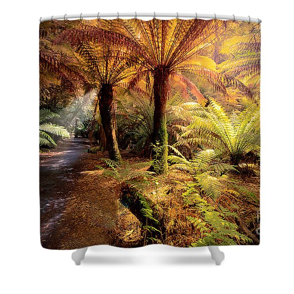Golden Forest Shower Curtain
