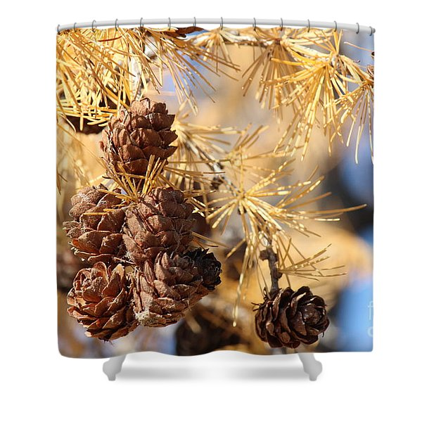 Golden Needles Shower Curtain