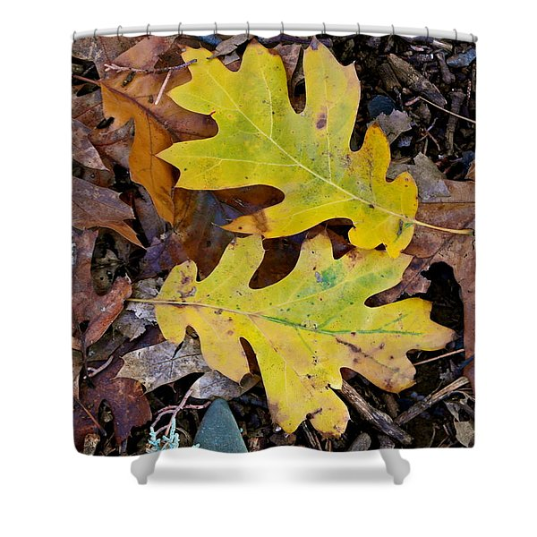 Golden Oak Leaf Duet Shower Curtain