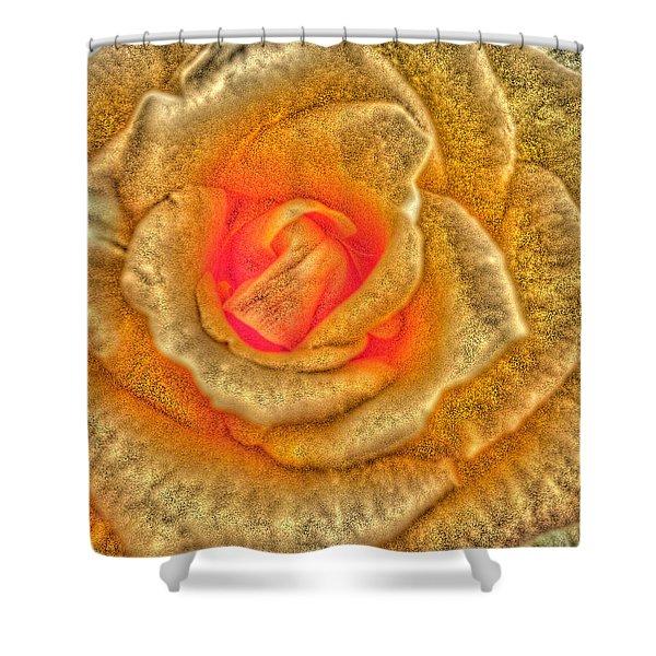 Golden Rose Shower Curtain