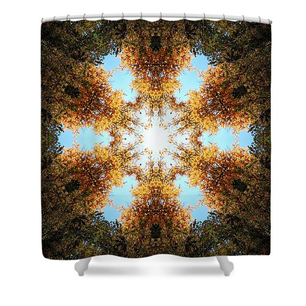 Golden Shimmer K2 Shower Curtain