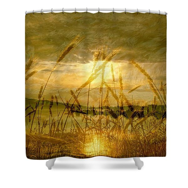 Golden Sunset Shower Curtain