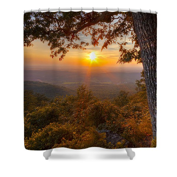 Golds Shower Curtain