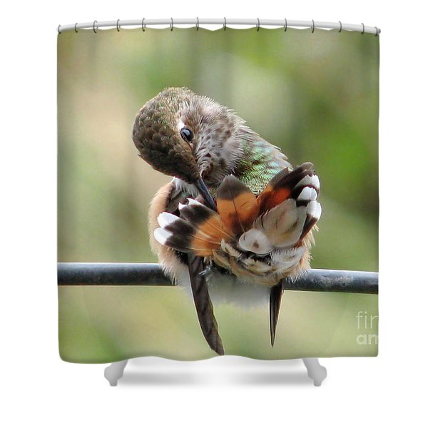 Good Grooming Shower Curtain