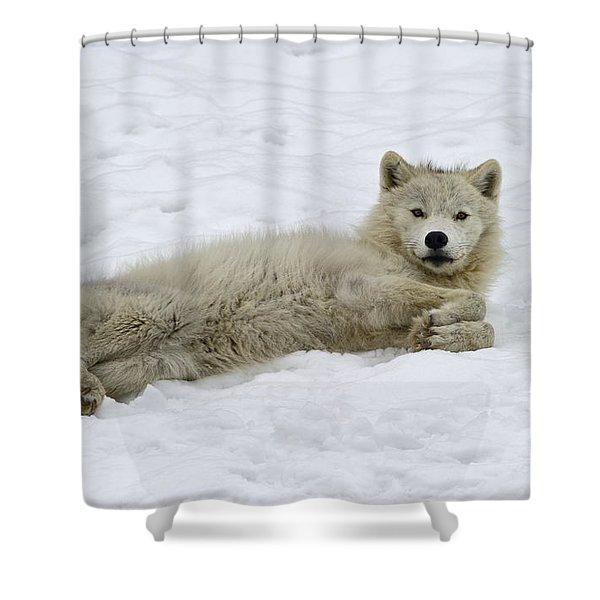 Good Wolfie ... Shower Curtain