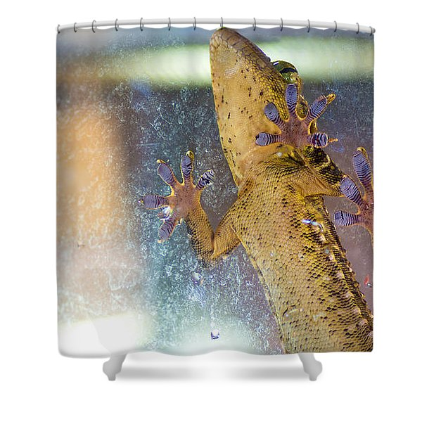 Grab A Hold Shower Curtain
