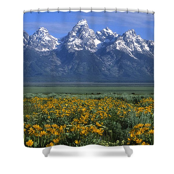 Grand Teton Summer Shower Curtain