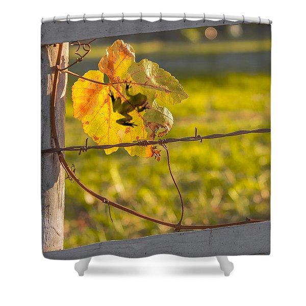 Grape Leaf Frog Shower Curtain