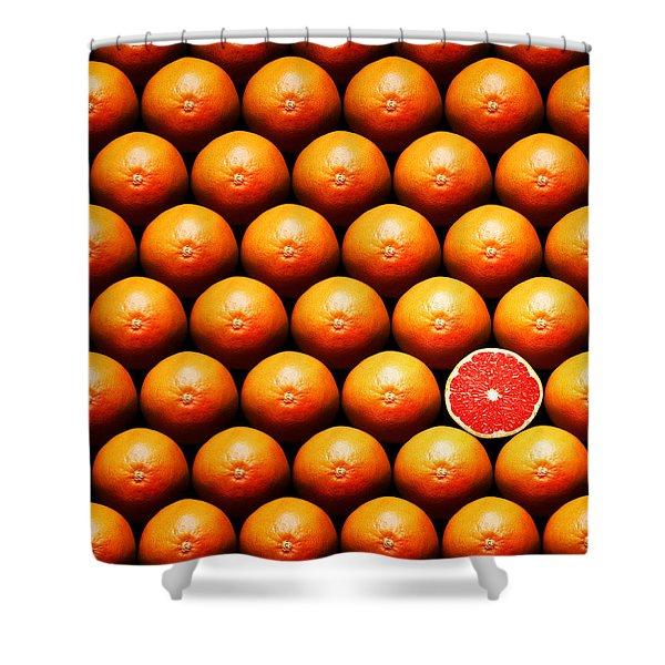 Grapefruit Slice Between Group Shower Curtain