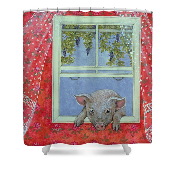 Grapes At The Window Shower Curtain