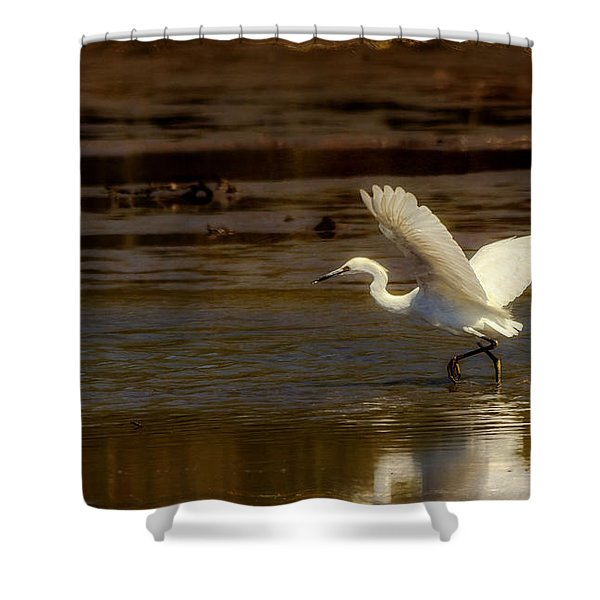 Great Egret Taking Off Shower Curtain