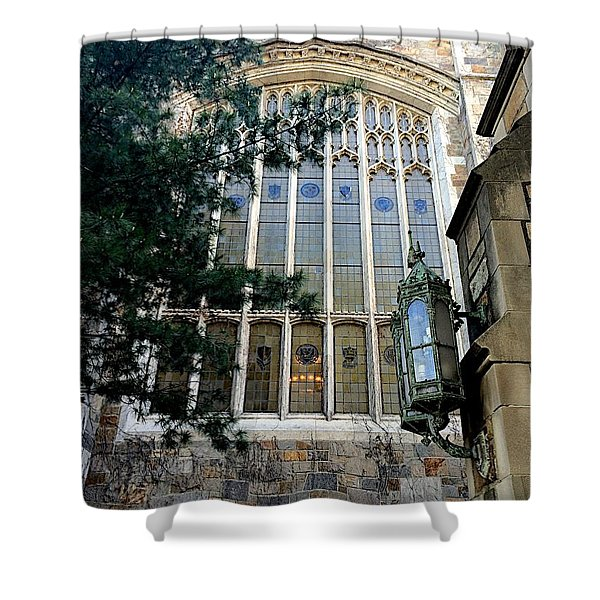 Great Glass Shower Curtain