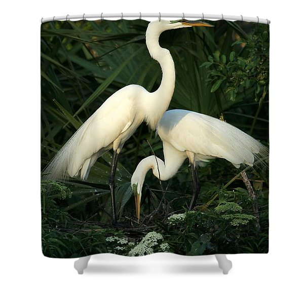 Great White Egret Mates Shower Curtain