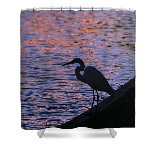 Great White Egret Silhouette  Shower Curtain