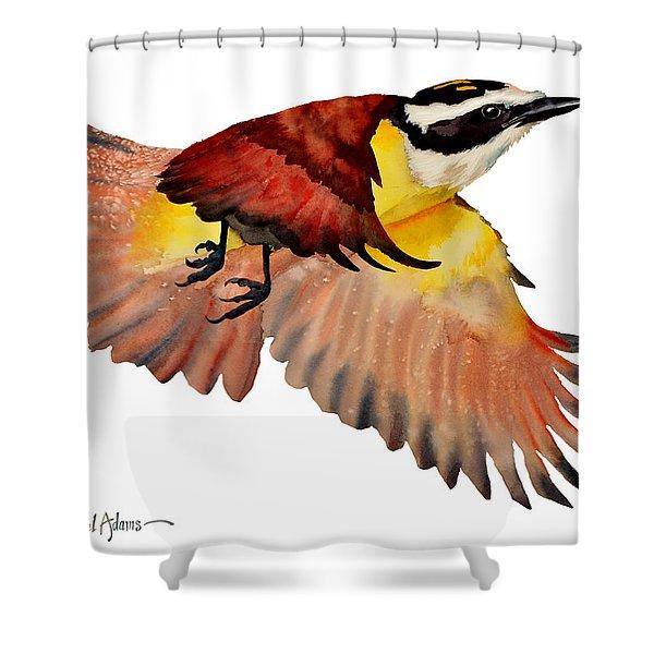 Da125 Greater Kiskadee By Daniel Adams Shower Curtain