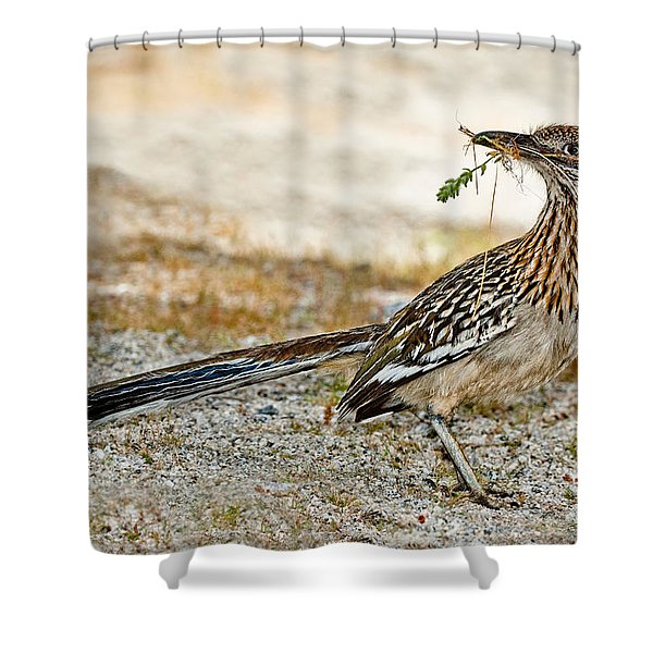 Greater Roadrunner With Nest Material Shower Curtain