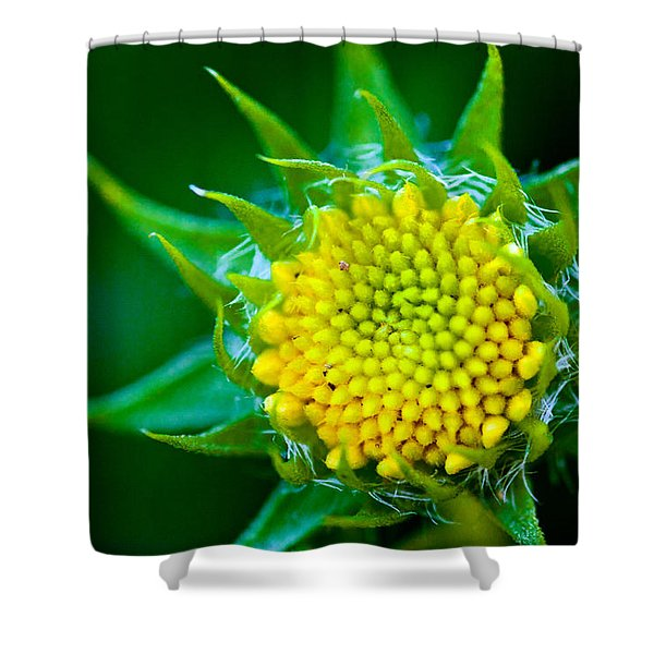 Green And Yellow Bloom Shower Curtain