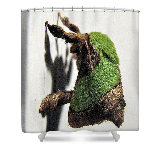 Green Hair Moth Shower Curtain
