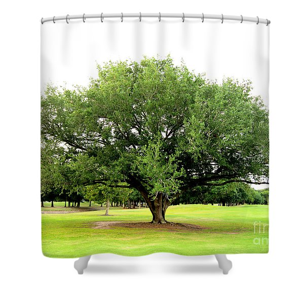 Green Tree Shower Curtain
