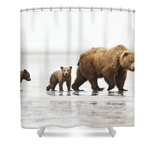 Grizzly Bear Mother And Cubs Lake Clark Shower Curtain