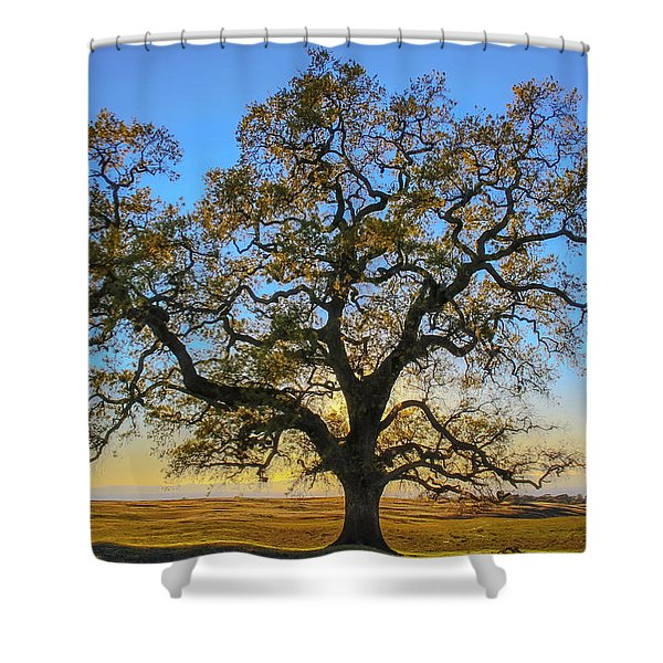 Growing In Life Shower Curtain