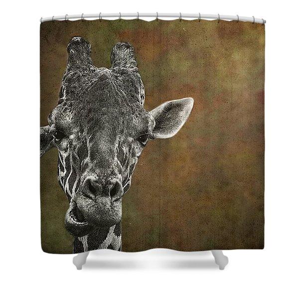 Grungy Giraffe 5654 Brown Shower Curtain
