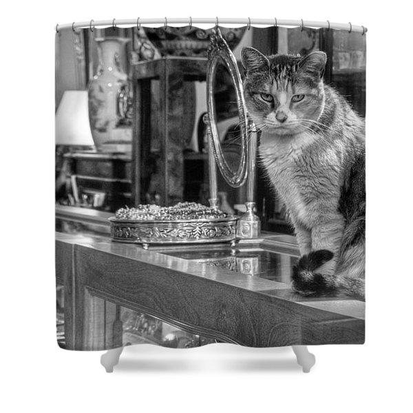Guard Cat Shower Curtain