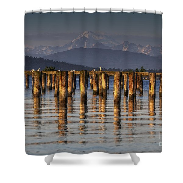 Guemes Channel Trail View Shower Curtain