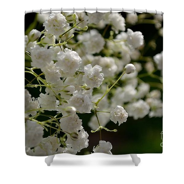 Shower Curtain featuring the photograph Gypsophilia by Scott Lyons