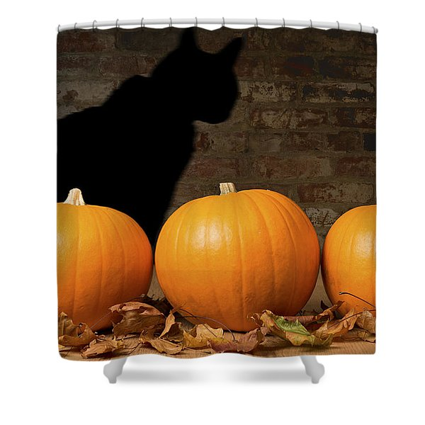 Halloween Pumpkins And The Witches Cat Shower Curtain